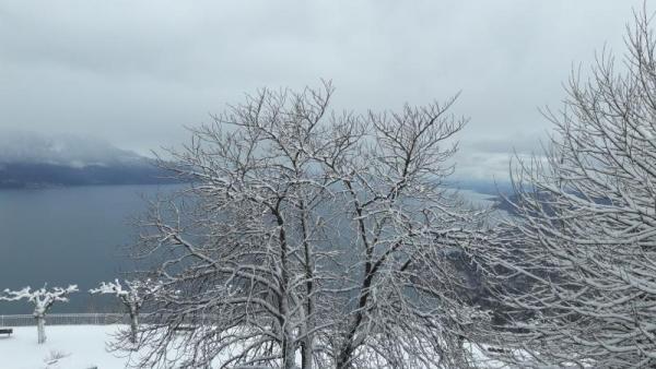 Caux sous la neige