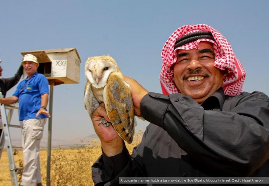 A Jordanian farmer holds a barn owl as a Jewish Israeli farmer, in the blue top, examines a nest box