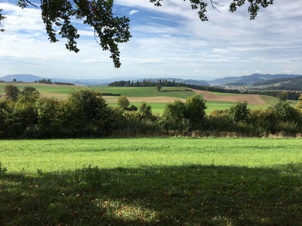 Schlosswil (I)